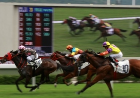 Happy Valley Race Course Hong Kong 2 480x337-6767f812-5dfe-46fc-b286-816130b6ef1d-0-480x337