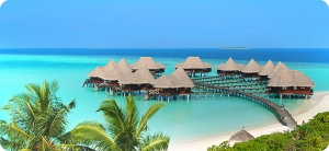 SEO_maldives