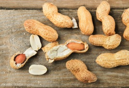 Cacahuetes-2[1]